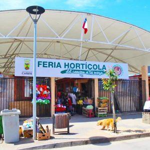 Tensoestructura Feria_Horticola_Cañete (1)